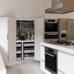 Beautiful  Modern Kitchen Storage Options Photo Ideas , Lovely  Modern Kitchen Storage Options Image Ideas In Kitchen Category